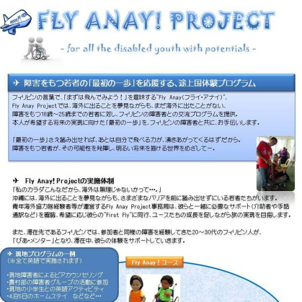 Fly Anay Project
